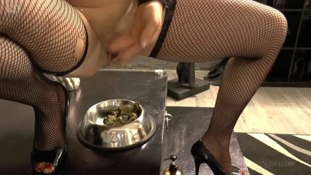 Mistress_Gaia_-_Butt_Plug_Scat_Slut.00001.jpg