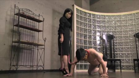 PSD-13__Scat_Part_1__Disc_1.mp4.00004.jpg