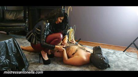 Antonella_-_Gives_Her_Own_Supreme_Caviar_-__Dogtrainingcuscatologo_.mp4.00003.jpg